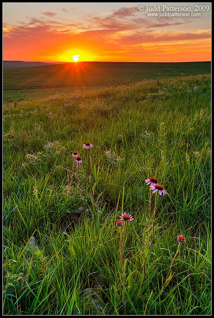 Tallgrass Prairie National Preserve, KS
