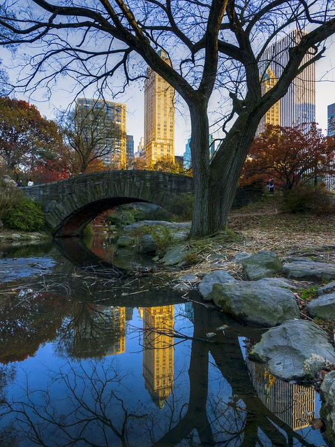 City reflections, Central Park, New York