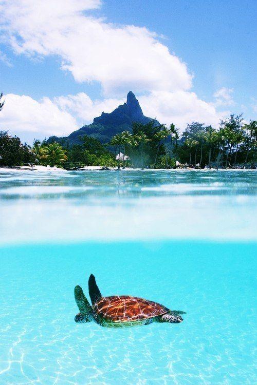 Paradise…
