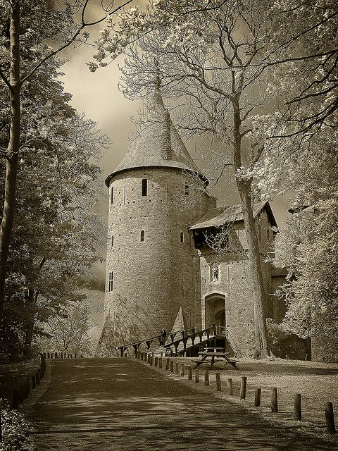 Castle Coch, Wales.I want to go see this place one day. Please check out my website Thanks.  www.photopix.co.nz