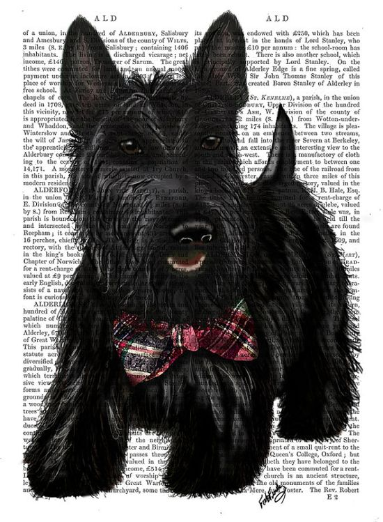 Scottish Terrier Scottie Dog Bow Original Painting Acyclic Art Illustration Digital Print Animal Painting Wall Decor Wall hanging Wall Art