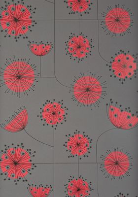 Dandelion Mobile Storm with Coral Wallpaper -