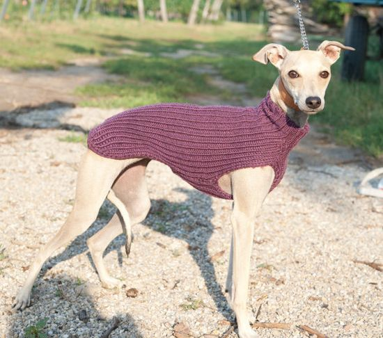 Custom Italian Greyhound Sweater / Jumper / Merino by GoodWitKnit, €55.00