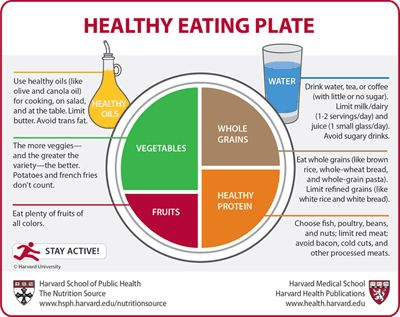 Havard Medical School's Healthy Eating Plate