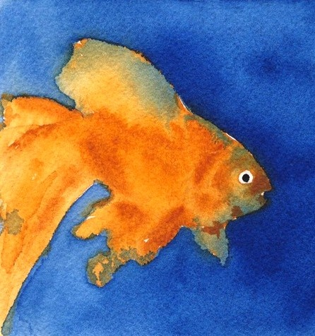 fishy fishy watercolor