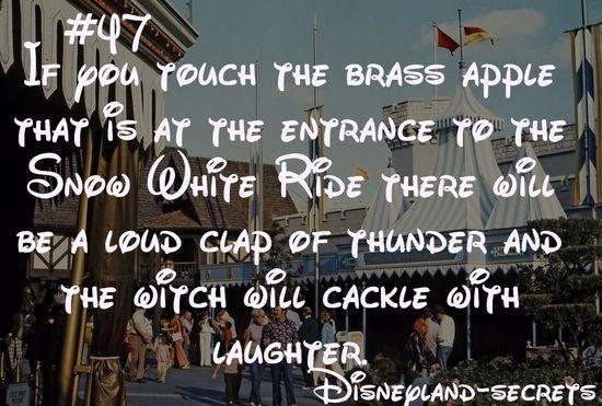 Disneyland Secret # 47