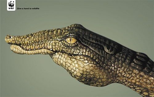 25 Creative and Powerful Public Interest ads #funny commercial #commercial ads