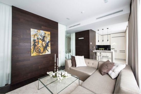 Cozy Interior Apartment Design Ideas