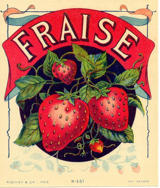ephemera #paperie #printables #vintage #labels #strawberries #french