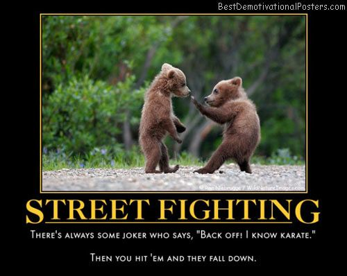 wild animal street fight #Humor #Cute #Animals