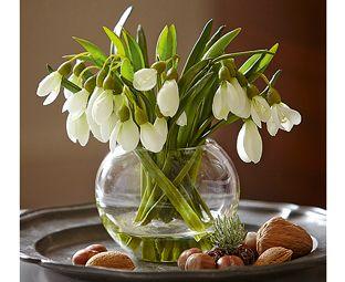 Classic Snowdrop flower arrangement