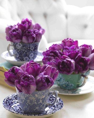 purple tulips in tea cups