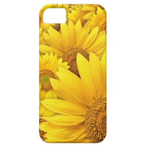 Yellow Sunflower Iphone 5S Case iPhone 5 Case