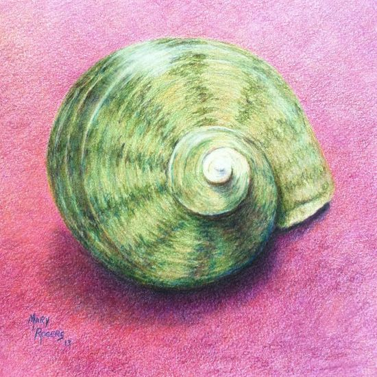 Green Shell Original Colored  Pencil Drawing by sweetteadesigns, $58.00