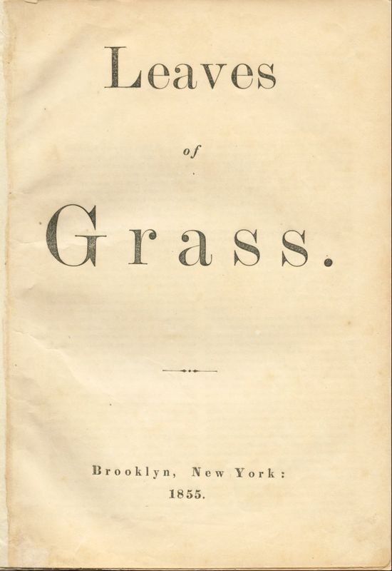 """""""Storming, enjoying, planning, loving, cautioning, Backing and filling, appearing and disappearing, I tread day and night such roads.""""  ? Walt Whitman, Leaves of Grass"""