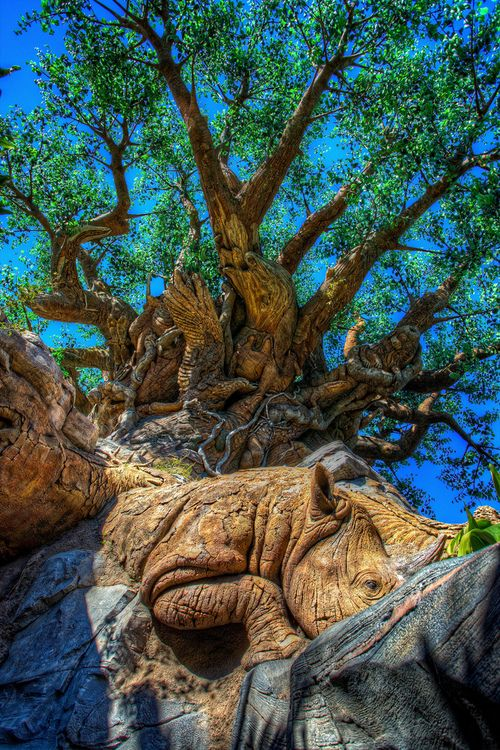 tree of life - walt disney world ... every time you look at it you see something else
