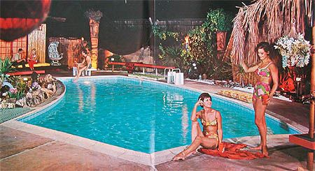 Anthony Pools Sales Brochure~ 1960s. Sign me Up.
