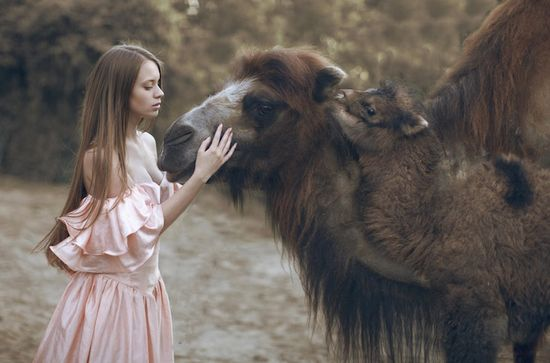Mythical Portraits Feature Wild Animals by Katerina Plotnikova - My Modern Metropolis
