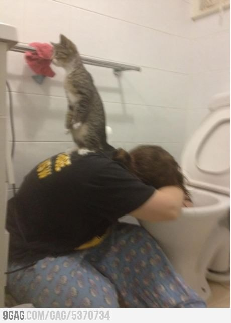 My cat would do this