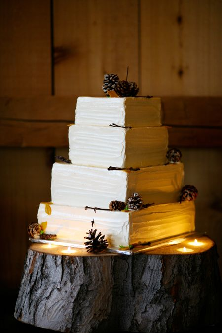 Rustic wedding cake with pinecones; Photo by Jenna Walker Photography #weddings