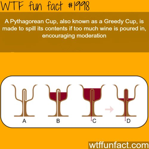 A Pythagorean Cup, Greedy Cup - WTF fun facts
