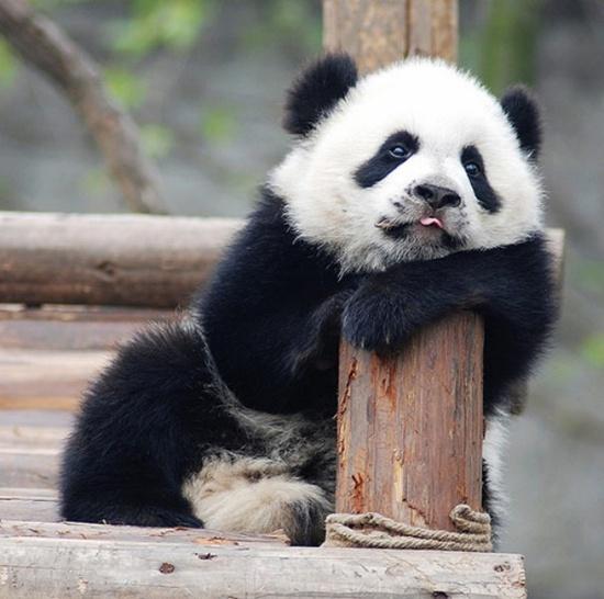 Yeahhh...it's Monday...