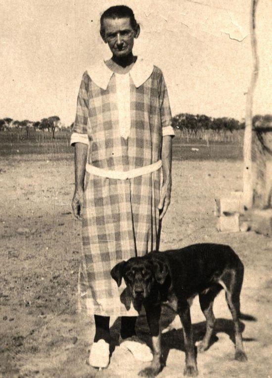 dog  #dog #south