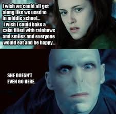 Mean Girls meets HP