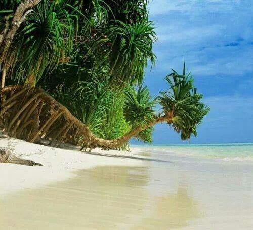 Komandoo Island, Maldives