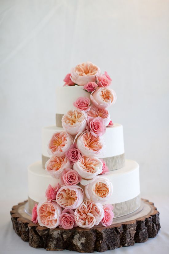 pink and peach garden rose wedding cake