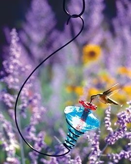 Beautiful glass hummingbird feeder.