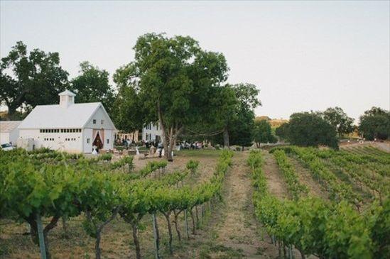 vineyard venue - wine themed wedding ideas