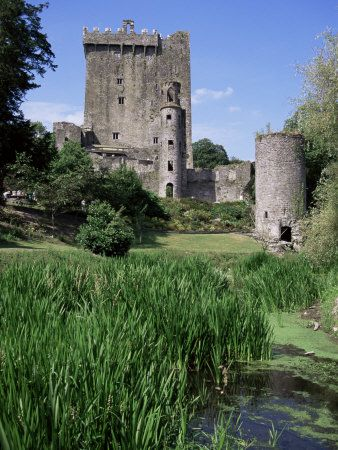 Blarney Castle - Ireland:  I love the angle that this picture was taken from. When I look at this, my imagination runs wild! The gray stone with the deep green vegetation is absolutely stunning! And the blue sky in the open background makes me smile.  :)