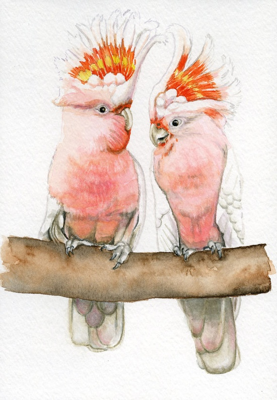 Pink cockatoo bird painting 5x7 print from by Earthspalette