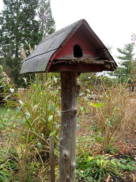 Lovely old bird house that looks like a barn~ Love it!