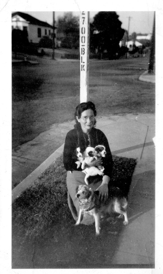 A proud mama dog and her darling pups along with (I'm guessing) her owner. #vintage #1940s #dogs #puppies #pets