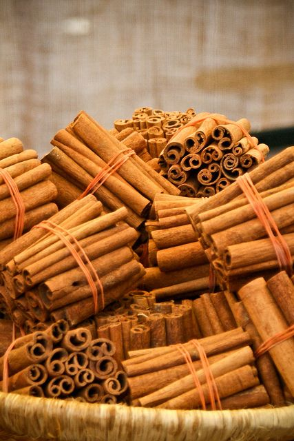 Canela en rama, stick cinnamon. by Vvillamon, via Flickr