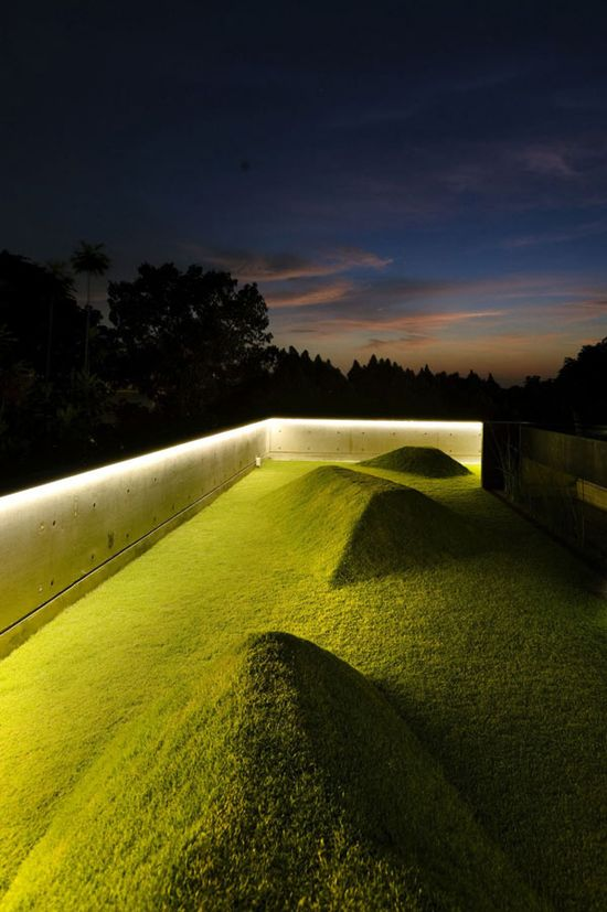Designed by Formwerkz Architects - lawn on the roof