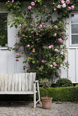Garden?Jadín - #Garden