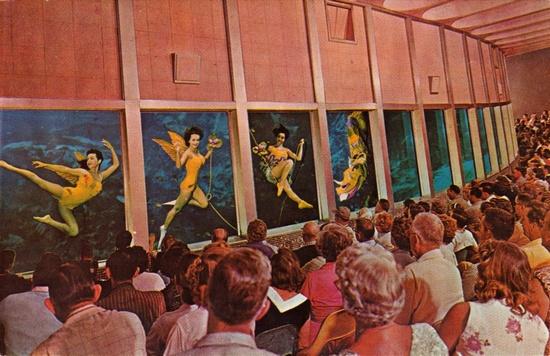 Mermaids of Weeki Wachee Springs, Florida.