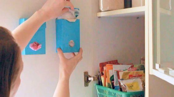 Как отбелить ковер в домашних условиях
