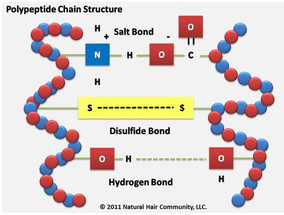 Amino Acid Translation Table  Oregon State University