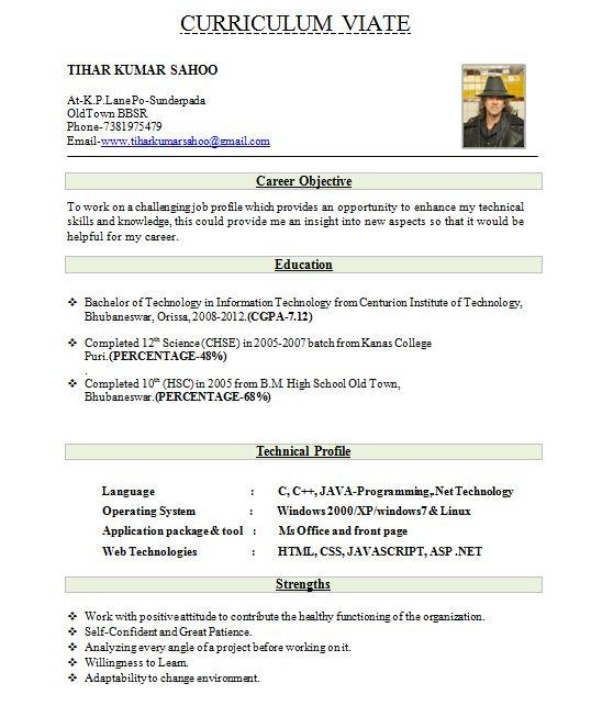 Resume Format Pdf In India