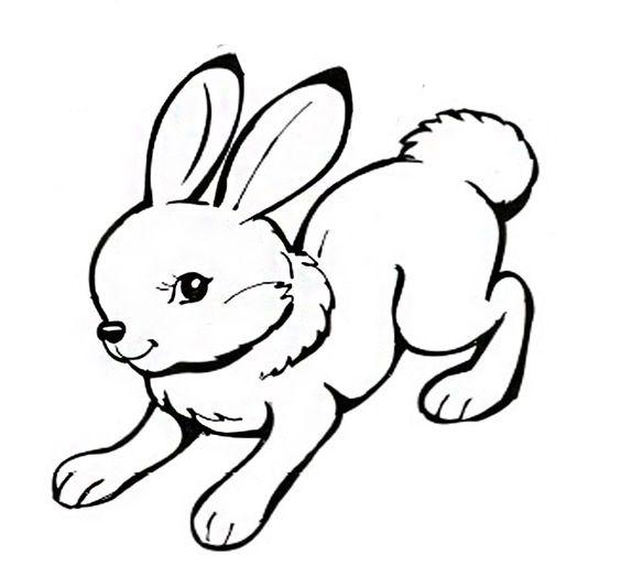 Раскраска для детей зайчик распечатать