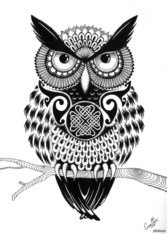Рисунок гелевой ручкой совы