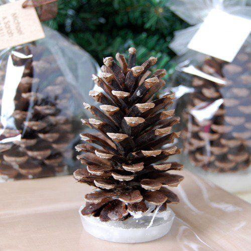 pinecone fire starter winter wedding favor