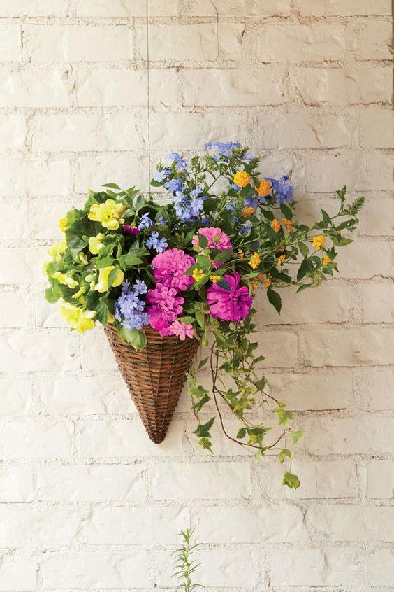 january flower clipart