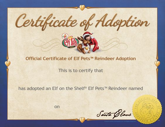 reindeer adoption certificate our elf on my homespun