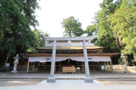 【鹿島神宮&グルメ】チェックしておかないと損する鹿島名物・グルメ・お土産ベスト16