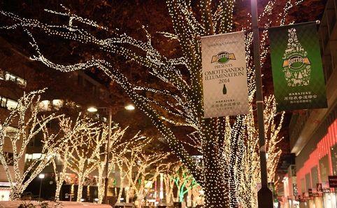 Omotesando Illumination 2014 - Time Out Tokyo